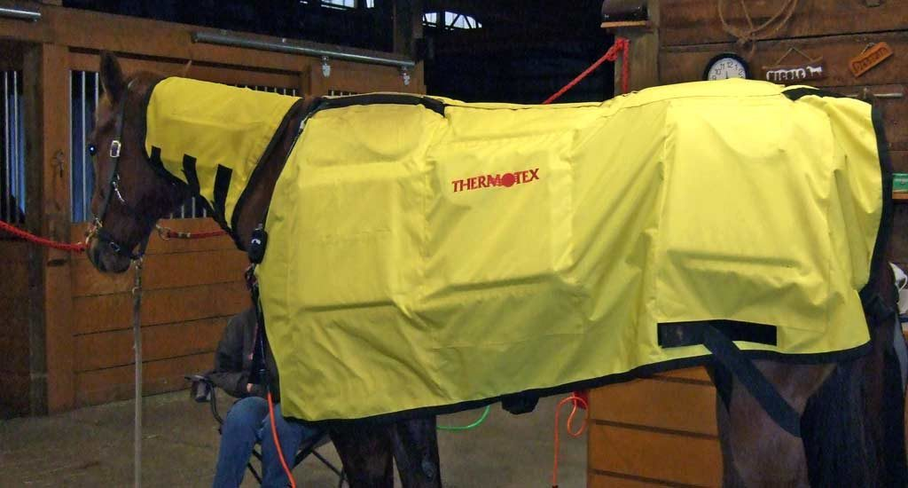 Equine Infrared Heat Blankets Matrix Therapy Products