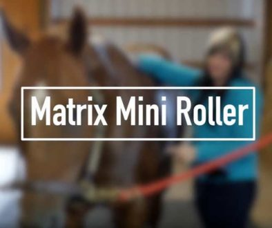 mini-roller-video-feature