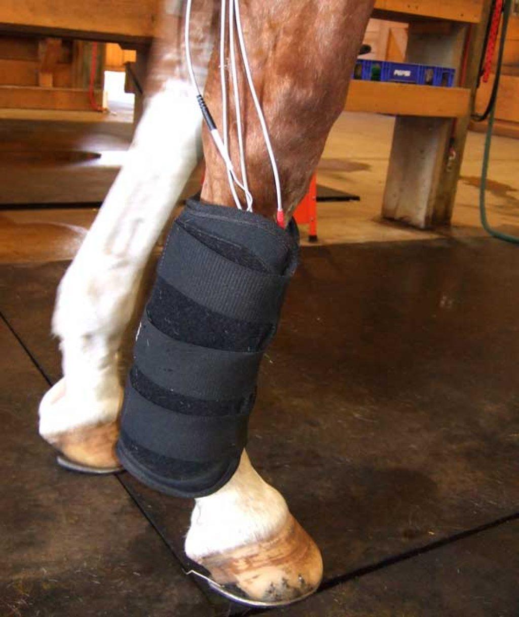 Microcurrent Leg Treatment Silverknit Matrix Therapy