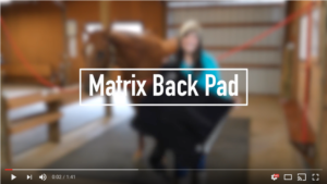 Video: Matrix Back Pad