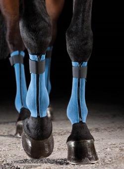EquiCrown Leg Wraps
