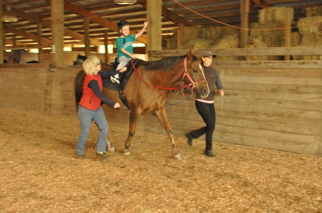 Therapeutic Riding Centers: Caretaker & Volunteer Perspective